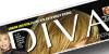 Nicoletta-Poli-Press-Release-Diva-E-Donna